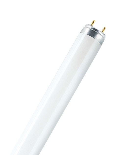 OSRAM Leuchtstoffröhre LUMILUX T8 L 18W/840 (EEK: A)